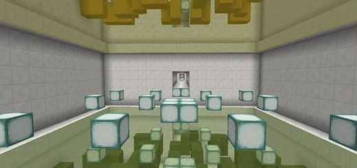 reflections-puzzle-map