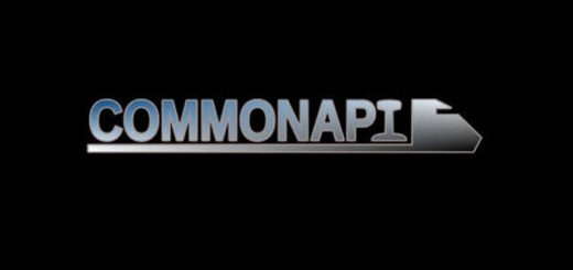 common-API