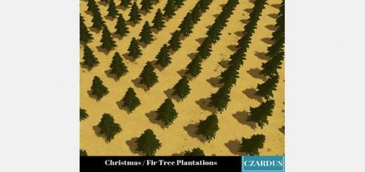 christmas-fir-tree-plantations-520×245