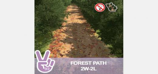 Photo of Cities Skylines – Forest Path