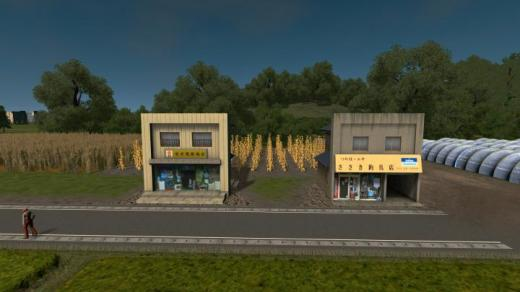 Photo of Cities: Skylines – JP Suburb Shop Pack 2