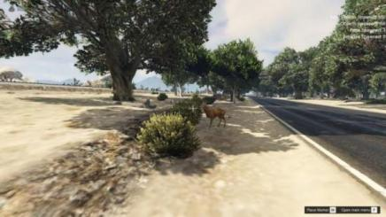 Photo of Gta 5 – Sandy Forests 1.0