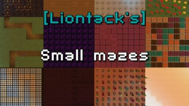 Photo of Minecraft – Small Mazes Map