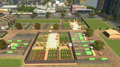 Photo of Cities Skylines – Cug Tomatoes Field 1