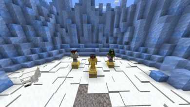 Photo of Minecraft – Biome Battles PVP Map